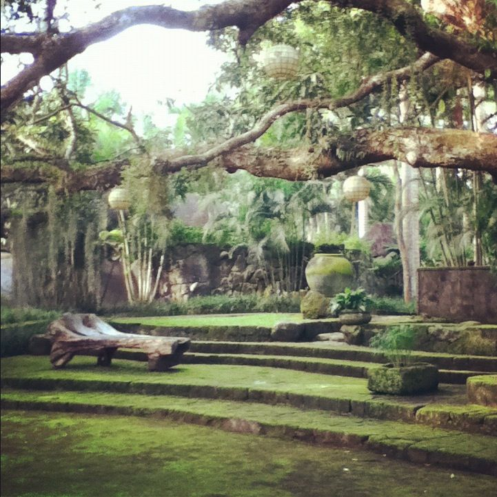 The Farm at San Benito. Must go back soon. Secret garden