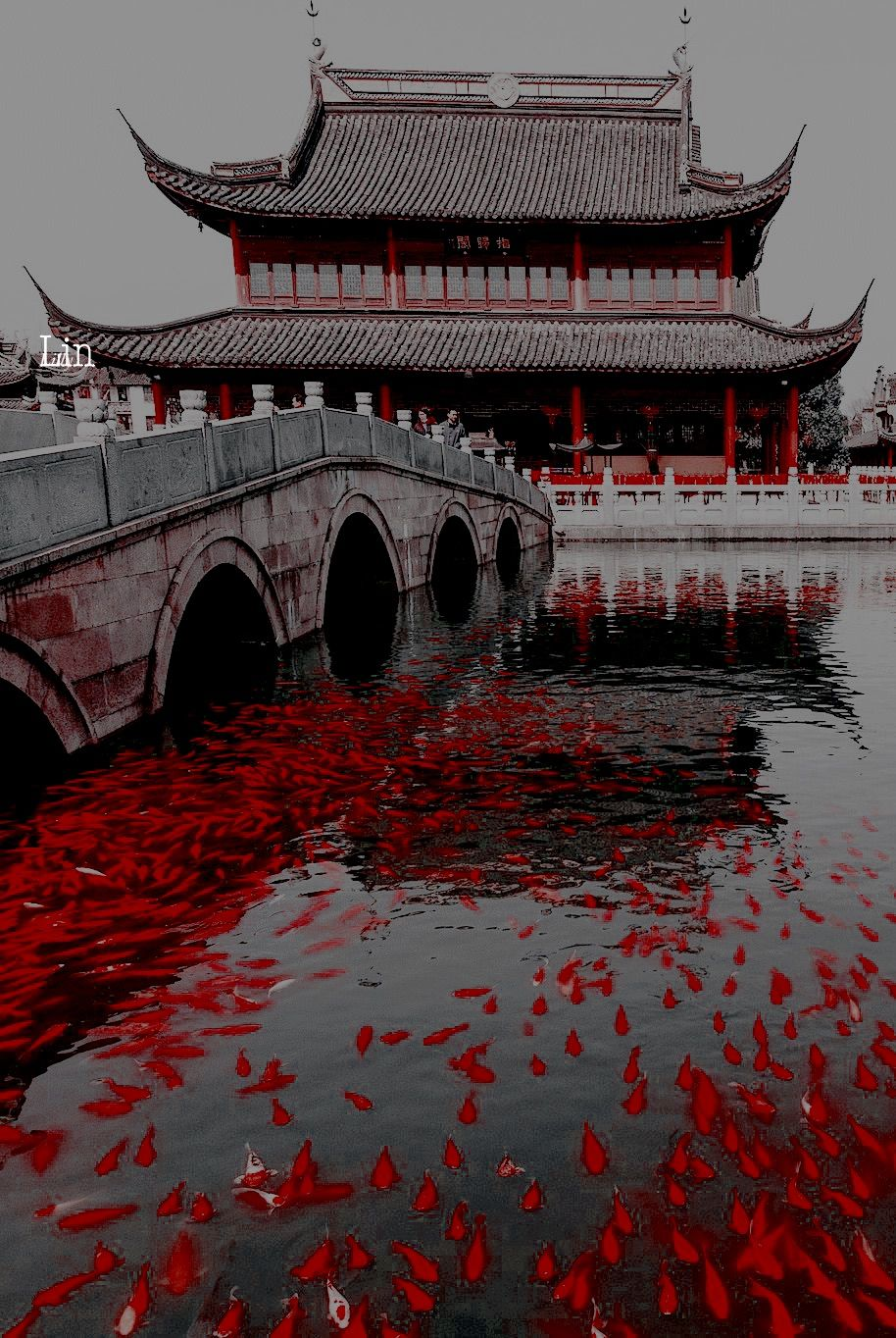 Aesthetic simple red theme 2/2 on We Heart It