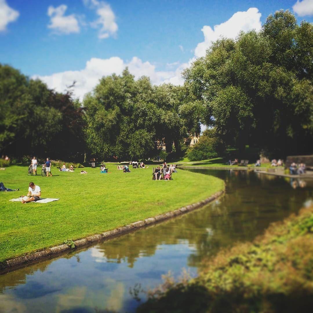 Lazy sunday. #germany #hamburg #plantenunblomen #park #trees #river ...