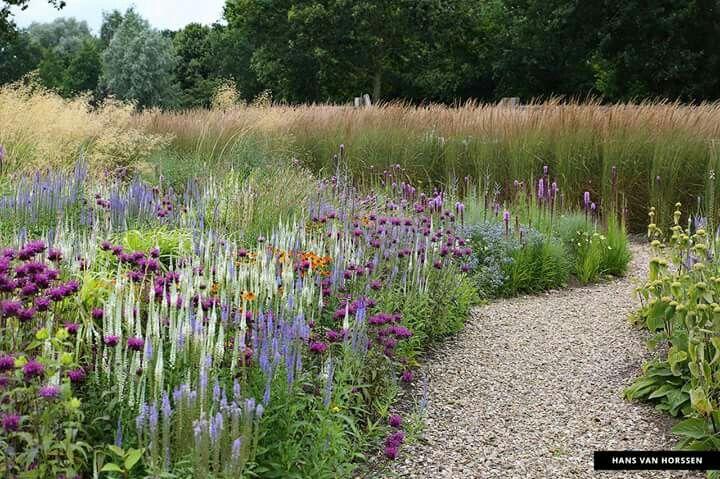 Designed By Michael King Prairie Garden Garden Planning Natural Garden