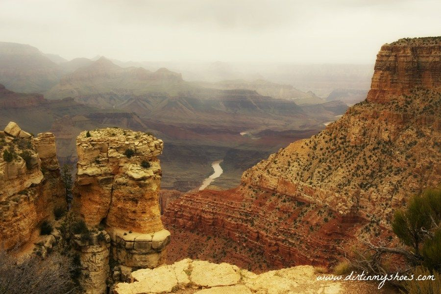 Moran Point || Grand Canyon National Park || Dirt In My Shoes