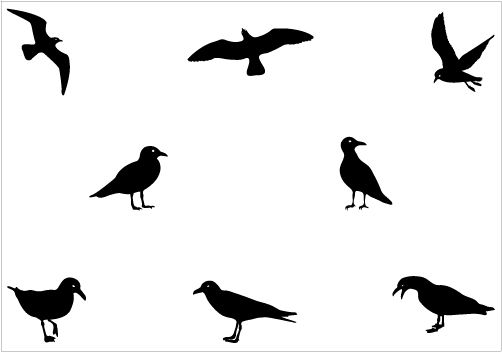 Seagull Silhouette Clip Art Vector Silhouette Art Silhouette Vector Silhouette Clip Art