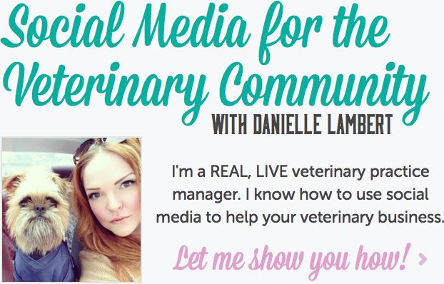 Social Media for the Veterinary Community with Danielle Lambert