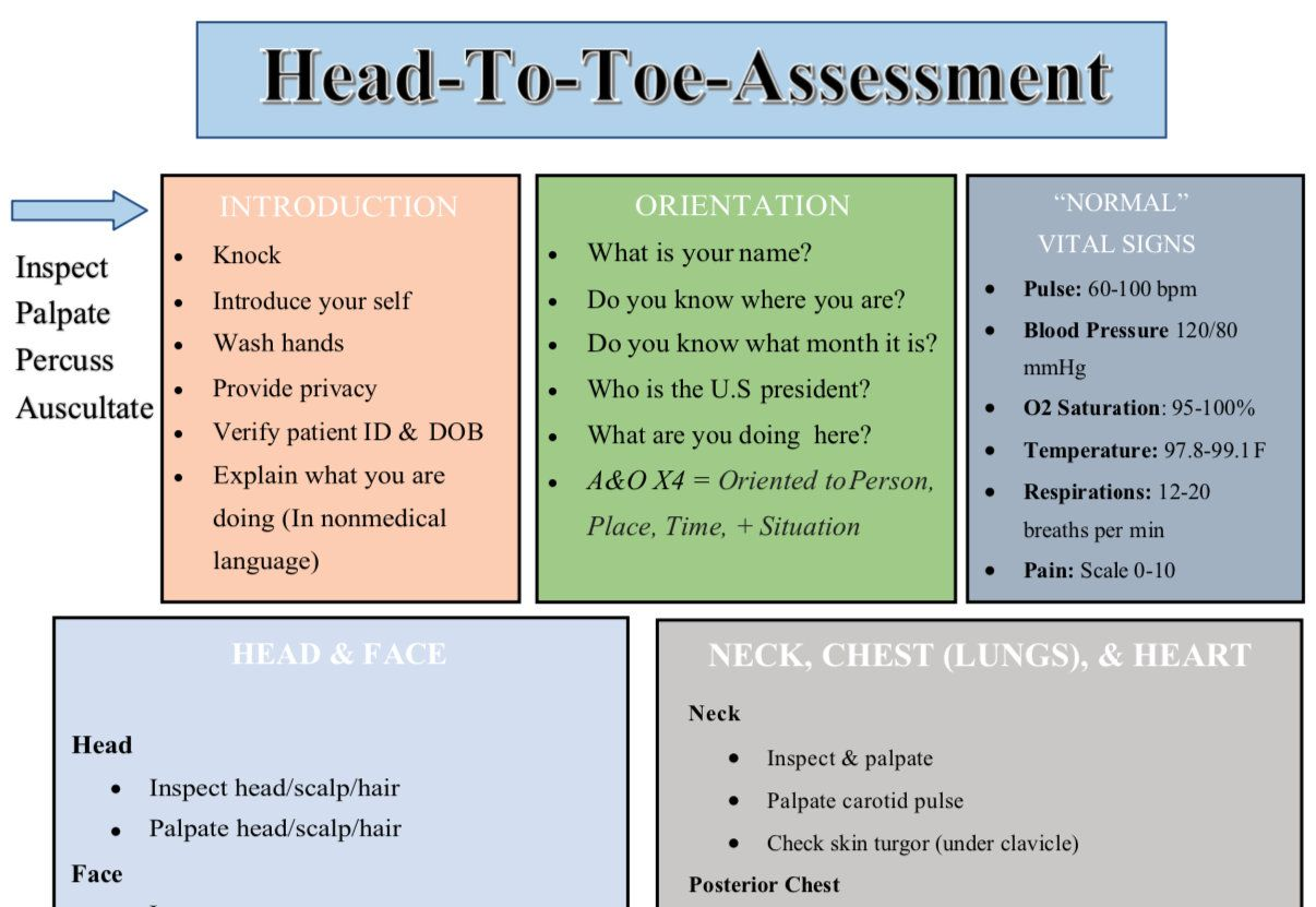 HeadToToe Nursing Assessment Guide/ Nursing Students