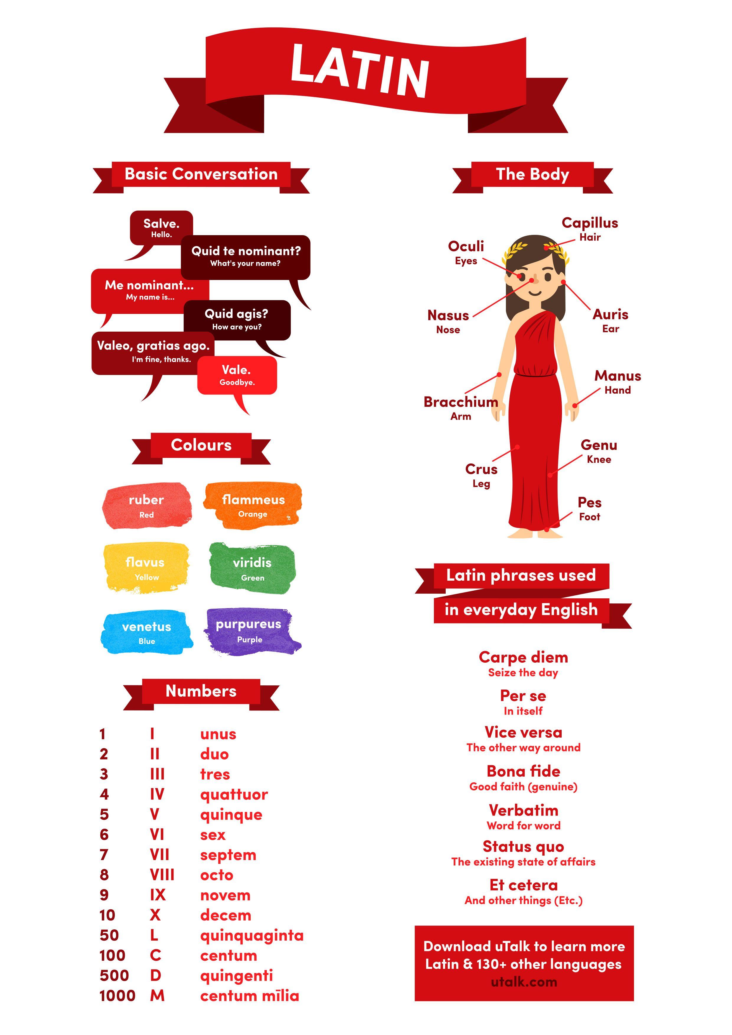 Speak Learn Latin For Beginners Jewel Case