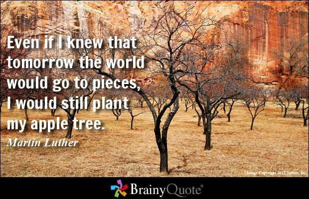Plant Quotes Trees must develop deep roots in order to grow strong and produce their beauty. Description from . I searched for this on /images Quotes Trees must develop deep roots in order to grow strong and produce their beauty. Description from . I searched for this on /imagesTrees must develop deep roots in order to grow strong and produce their beauty. Description from . I searched for this on /images