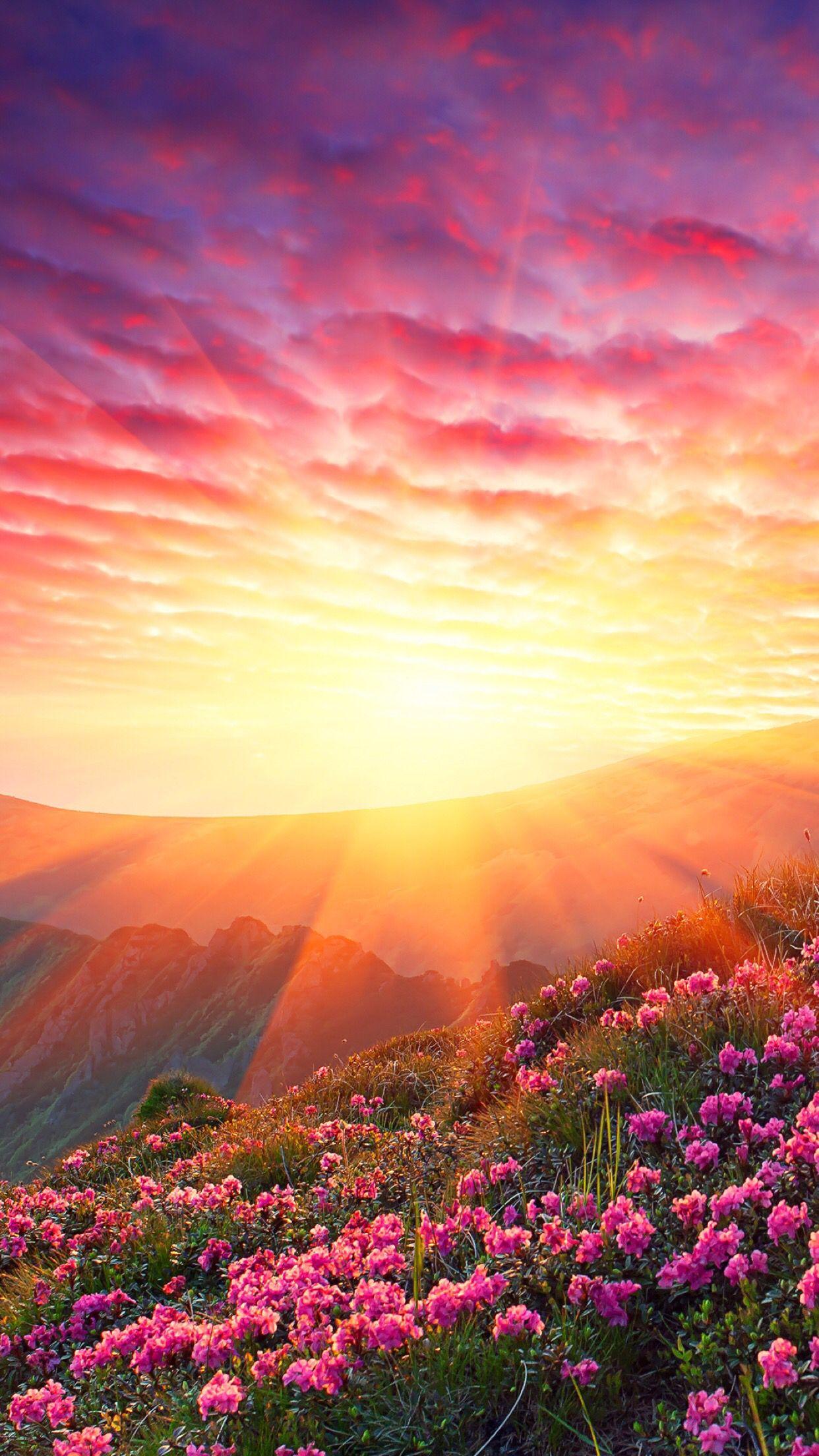Sunny Spring Hillside Spring Landscape Landscape Beautiful Nature