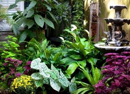 New Orleans Courtyard Gardens | ... Manor House Bed And Breakfast | New  Orleans, Louisiana | BBOnline.com