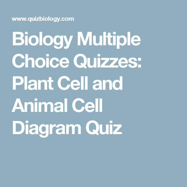 Biology Multiple Choice Quizzes Plant Cell And Animal Cell Diagram