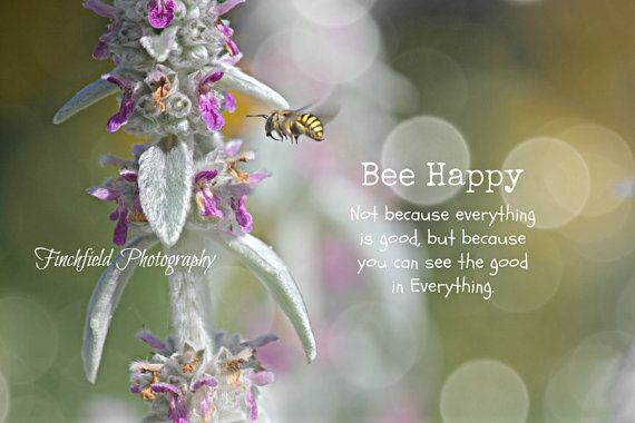 Bee Happy  bee photography nature photography bee by finchfieldart, $33.85