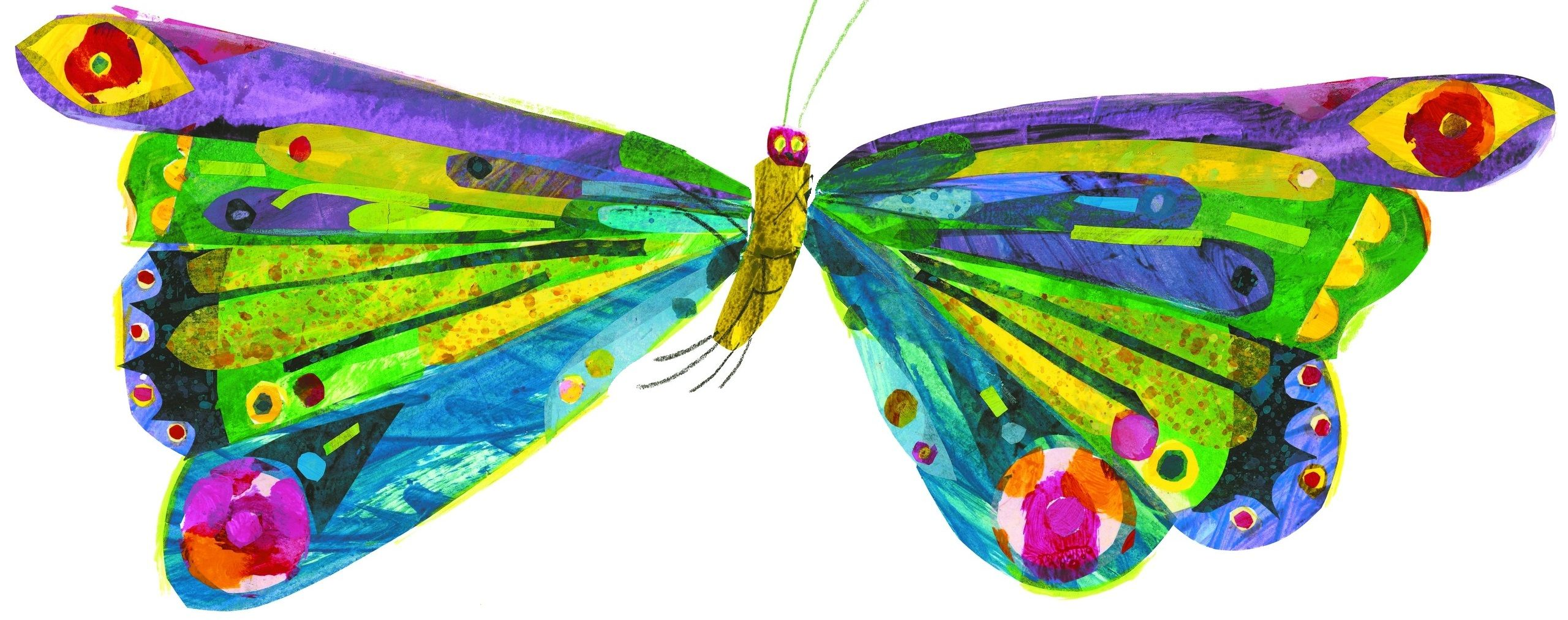 hight resolution of very hungry caterpillar butterfly
