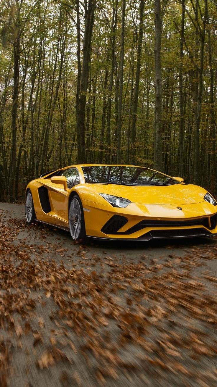 Lamborghini Aventador S, on-road, sports car, autumn, 1080×1920 wallpaper – Credit Doctors