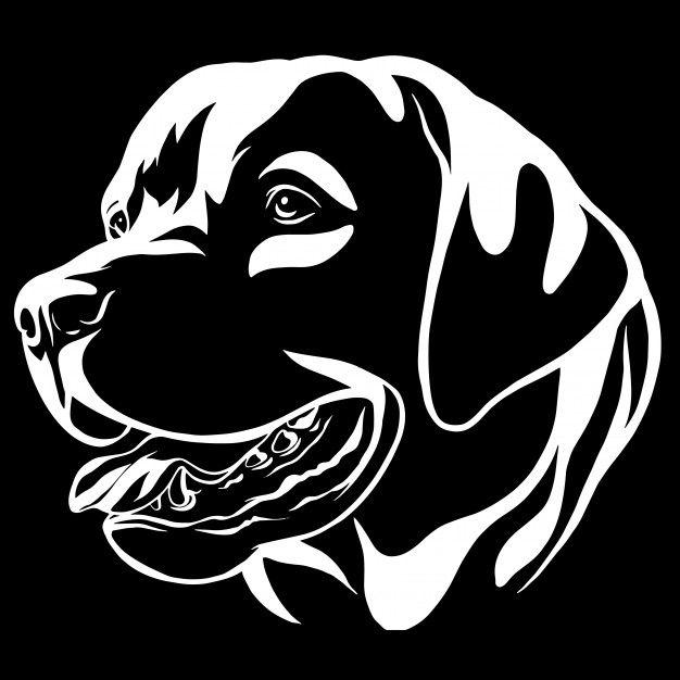 Decorative Portrait Of Dog Labrador Retriever Vector Isolated Illustration Hayvan Cizimi Cizimler Hayvan