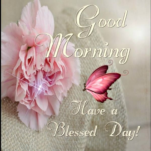 Good Morning Have A Blessed Day With Images Good Morning
