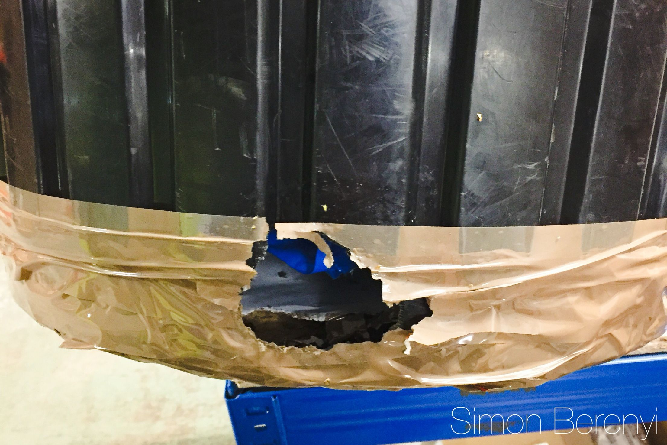 When rats get stuck in a bin, they will find or make a way