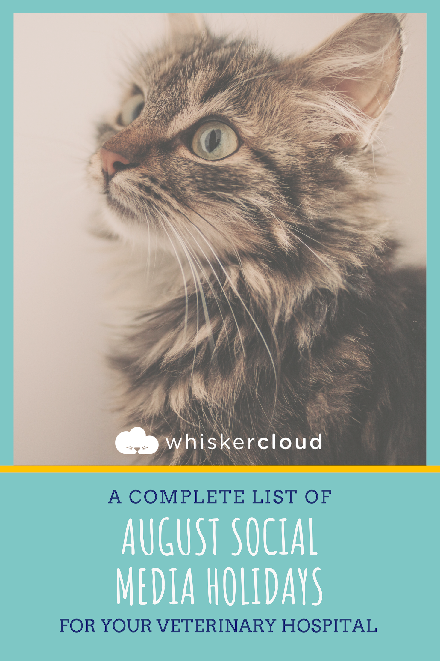 Complete List Of Social Media Holidays For Veterinary Hospitals Veterinary Hospital Veterinary Pet Holiday