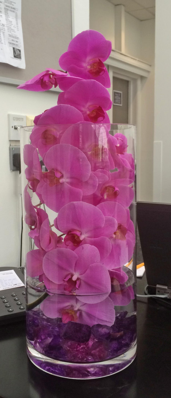 4Pv Purple Phaleanopsis Orchid, Purple Acrylic Stone