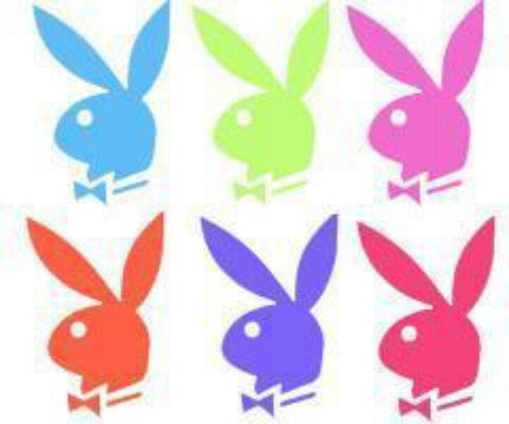 Pin On Bunny Love