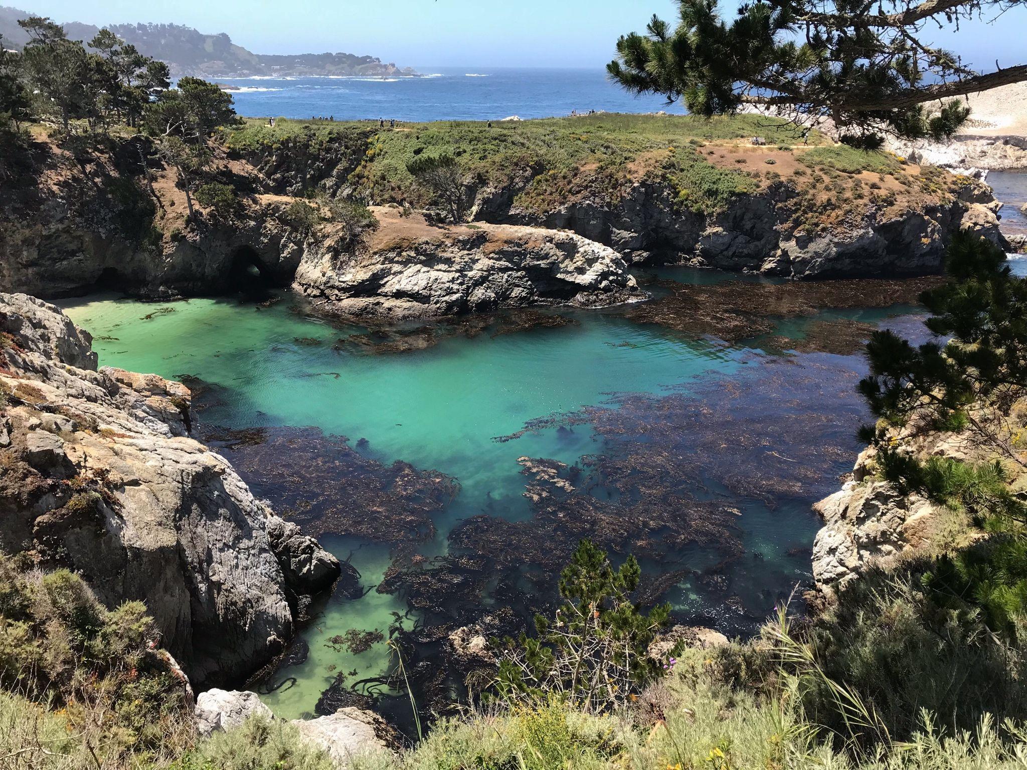 point lobos reserve california 4032x3024 free stuffs on site rh pinterest com