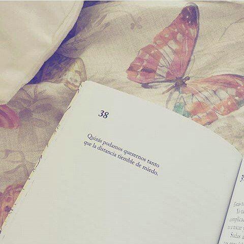 Resultado De Imagen Para Frases Poeticas De Amor De Libros