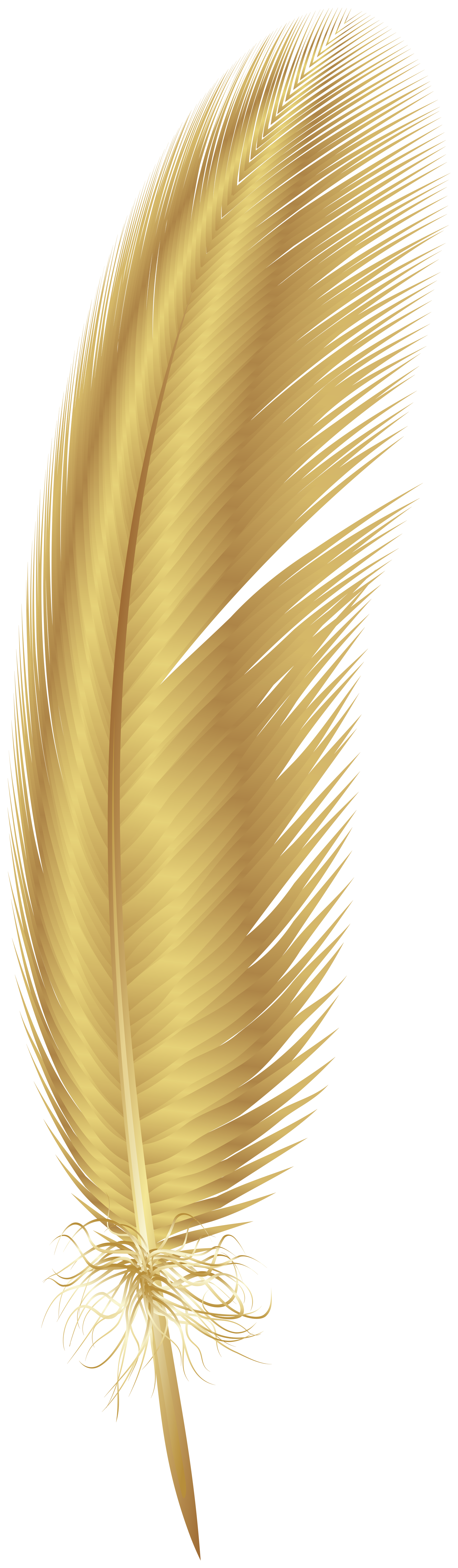 Golden Feather Png Clip Art Gallery Yopriceville High Quality Images And Transparent Png Free Clipart Free Clip Art Clip Art Png