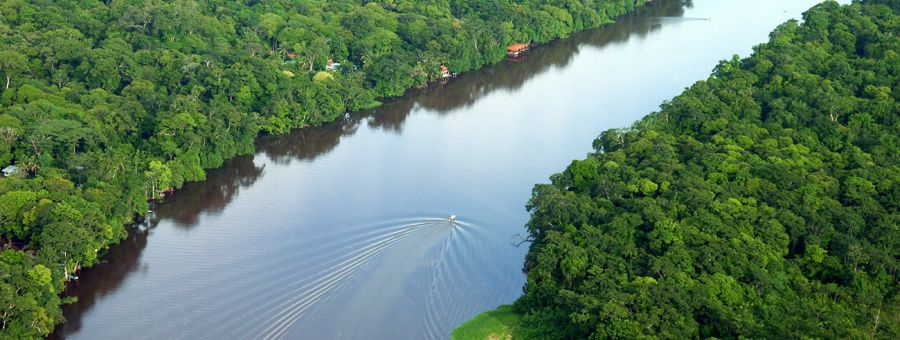 010bb68222c85db7babeb5f9d3baf33f - Tortuga Lodge And Gardens Costa Rica