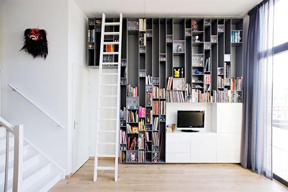 Dynamic Dunny Display Built Into Bookshelf