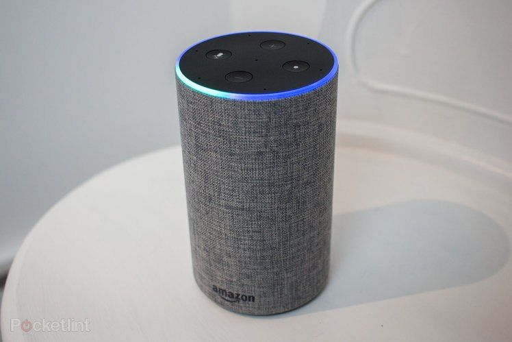 How to turn on alexas song id feature alexa enabled