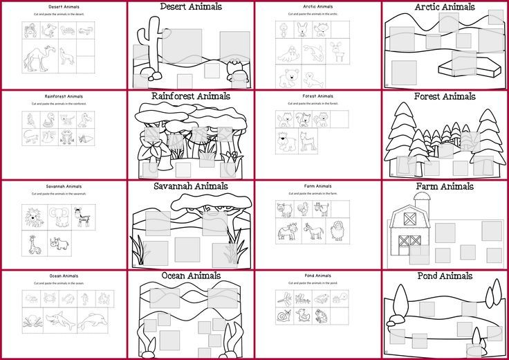 rainforest animal habitats worksheets classroom animal classification cut paste worksheets. Black Bedroom Furniture Sets. Home Design Ideas