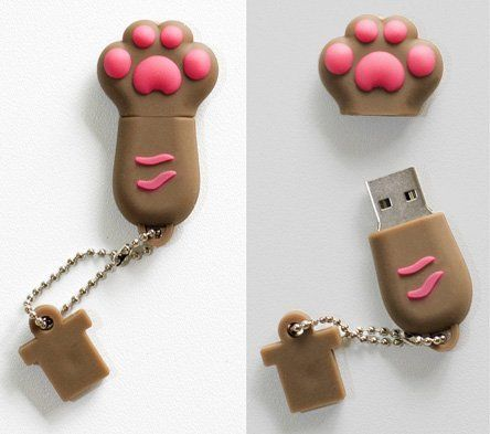 Premium Brown paw usb