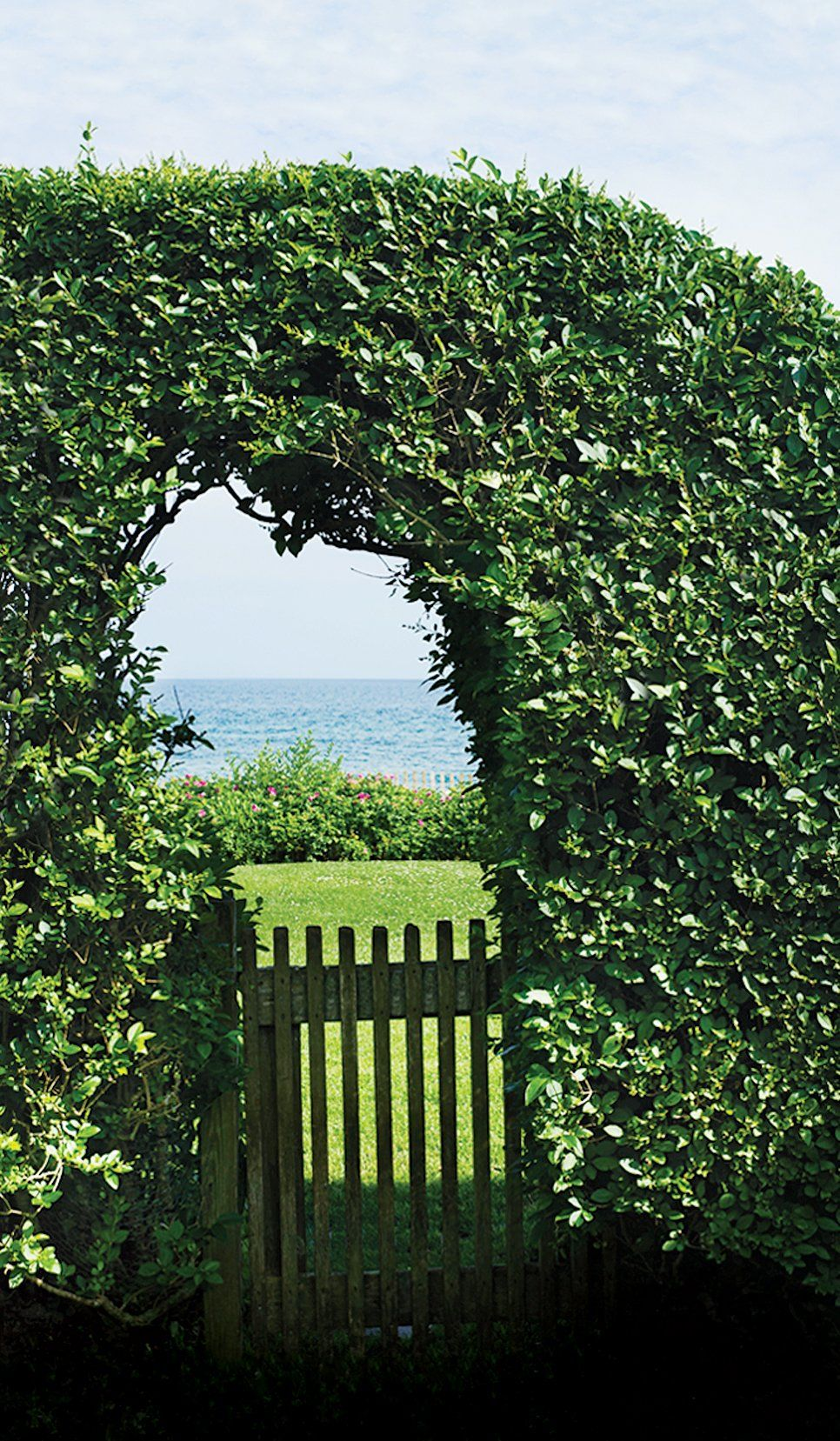 Katharine and William Rayner\'s Lavishly Eclectic Garden | Lawn ...