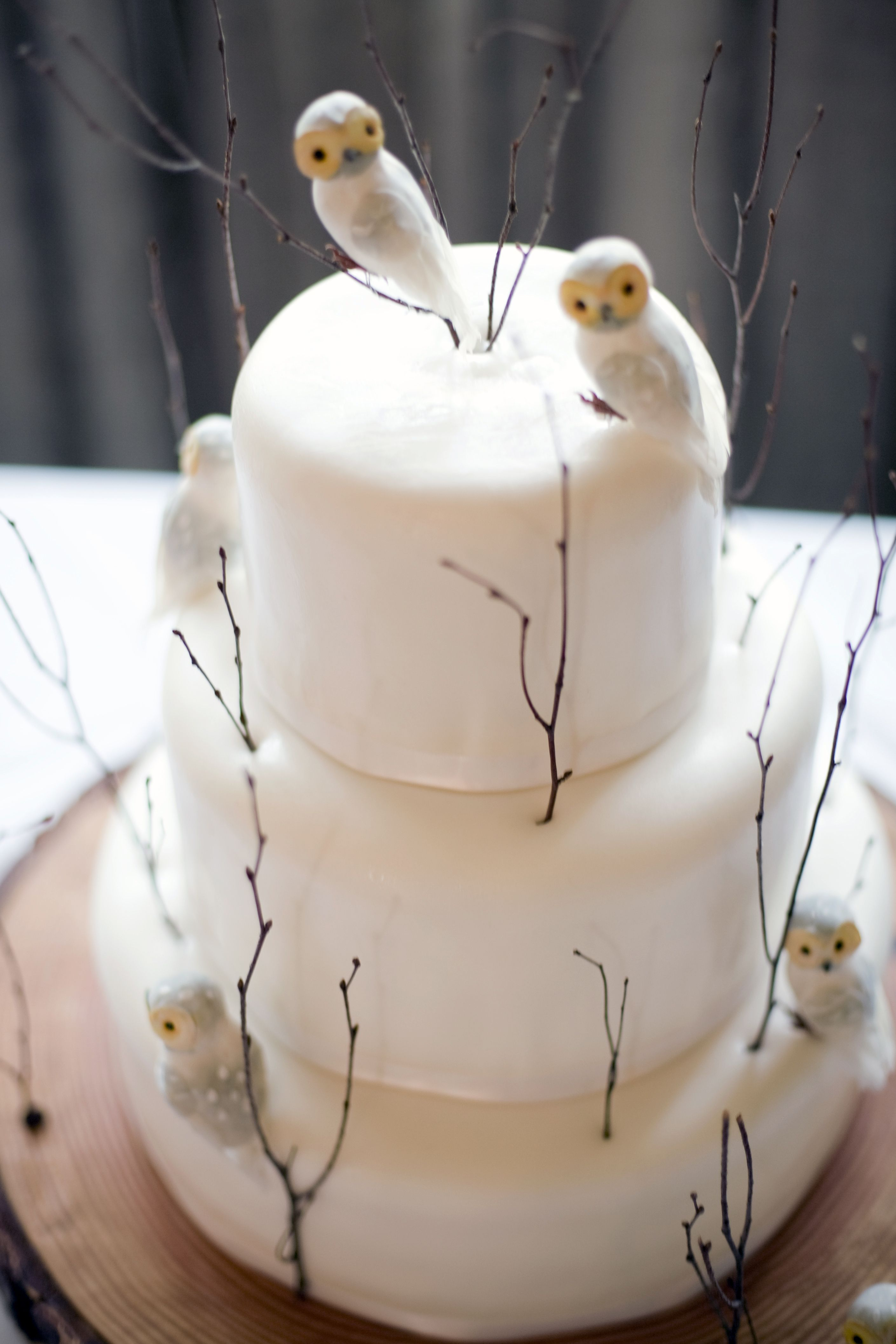 corujinhas inverno folhas secas  Owl-trimmed winter cake!!