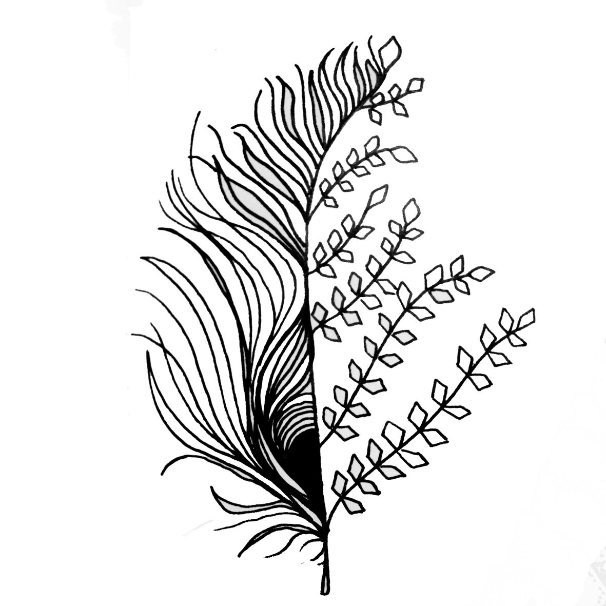 Tattoo plume feuille hybride feuille plume floral tattoo tatouage noir et blanc black 39 n - Tatouage trefle a 4 feuilles ...