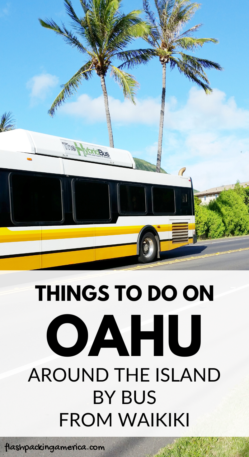 011120215a33140df9776e7a04065f3f - How To Get From Waikiki To Pearl Harbor By Bus