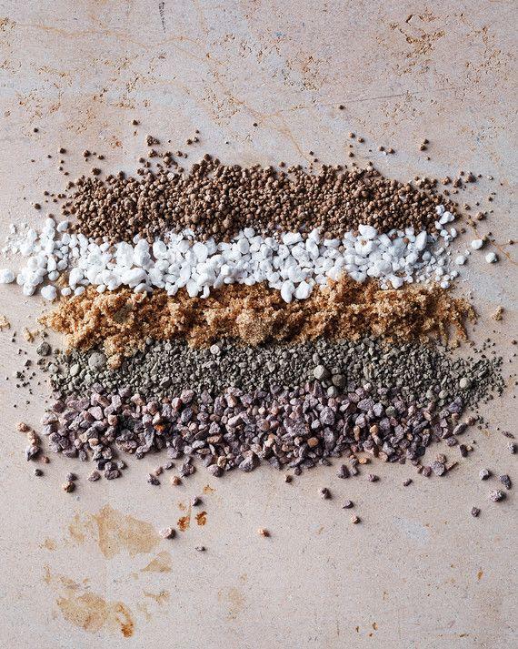 Understanding the Ingredients of Soil Succulent soil