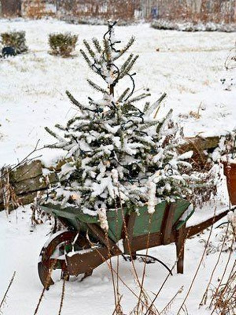 a snowy tree in a garden cart is a cute idea and looks natural