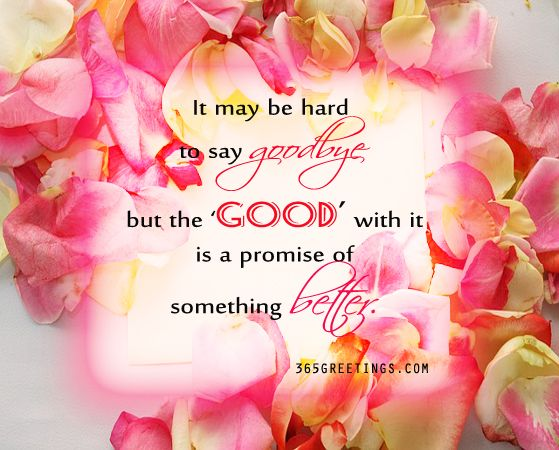 Farewell Messages, Wishes and Sayings | Farewell quotes, Qoutes ...