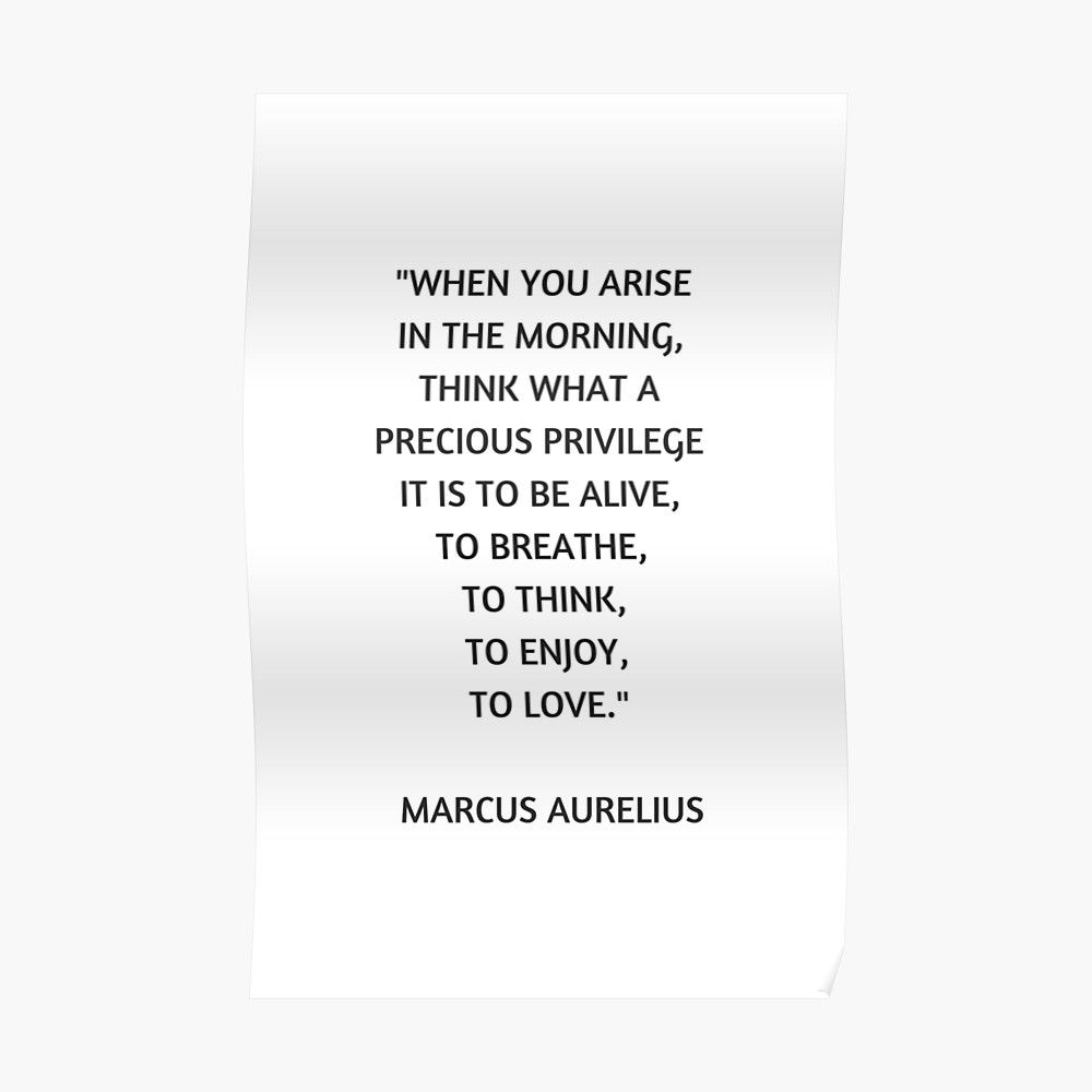 Stoic Philosophy Quote Marcus Aurelius What A Precious Privilege It Is To Be Alive Poster By Ideasforartists Philosophy Quotes Quotes To Live By Stoic Quotes