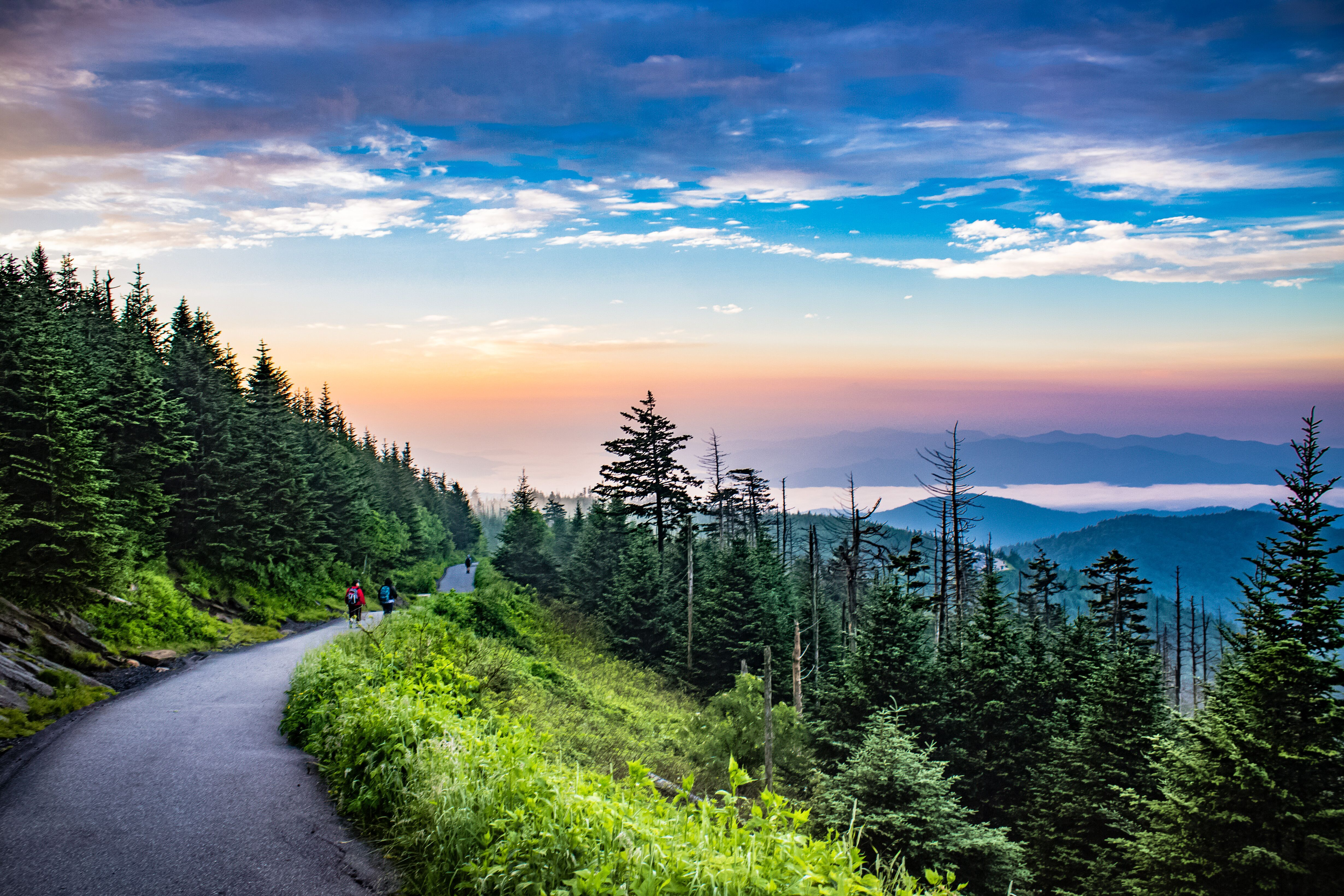A spectacular sunrise on the trail to Clingman's Dome in ...
