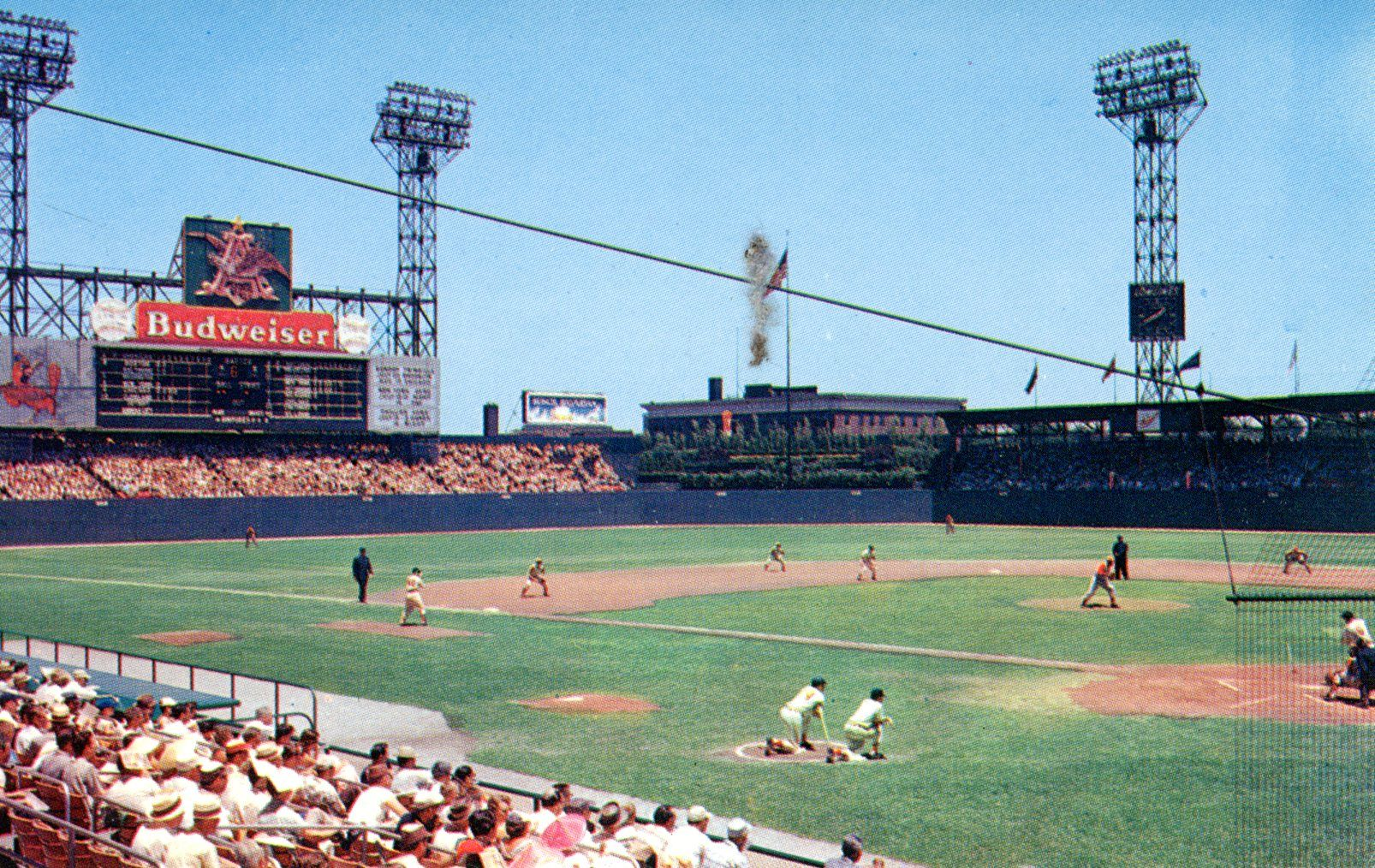 Sportsman Park St Louis Cardinals Baseball Park Baseball Photography Cardinals