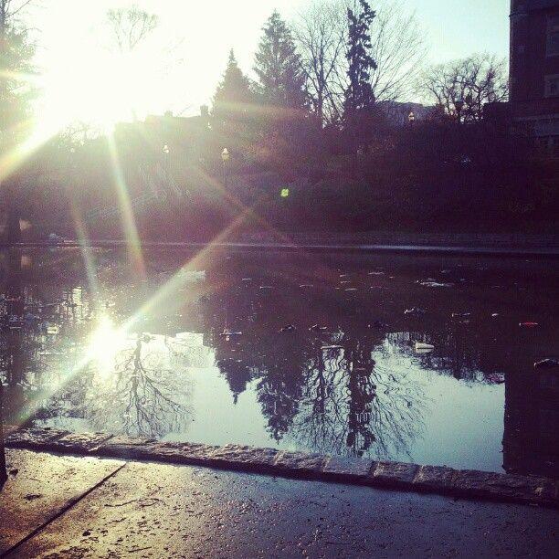 Morning after Mirror Lake jump. Did you jump? #beatmichigan #OhioState #buckeyenation