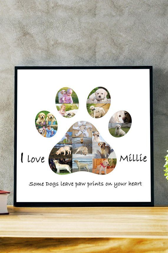 Photo of Dog Paw Pet Loss Gift Regalos para perros Memorial Gift para mascotas Gift Memorial Cat Memorial Photo Collage Gift Dog Lover Gift Dog Photo Collage Dog Gift