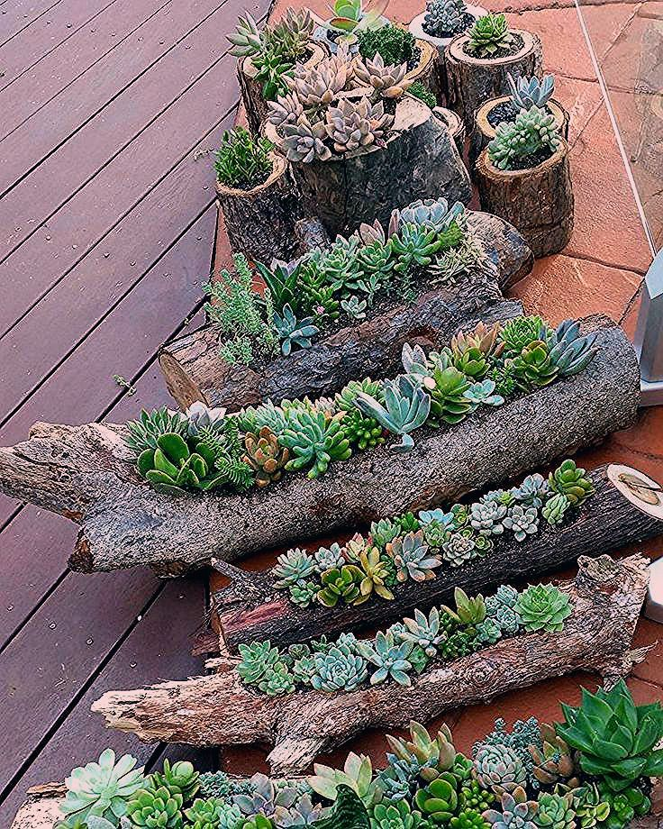 Photo of 60 erstaunliche DIY Succulents Garden Decor Ideas – Garten Dekoration