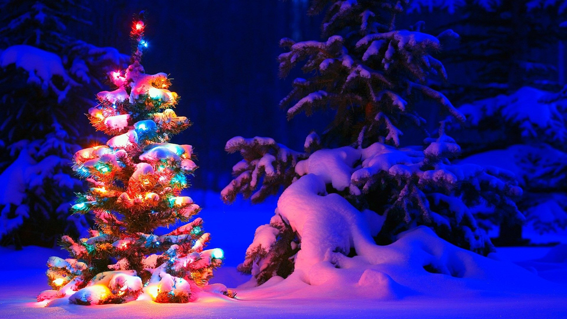Christmas Christmas Desktop Snowy Christmas Tree Christmas Wallpaper Free