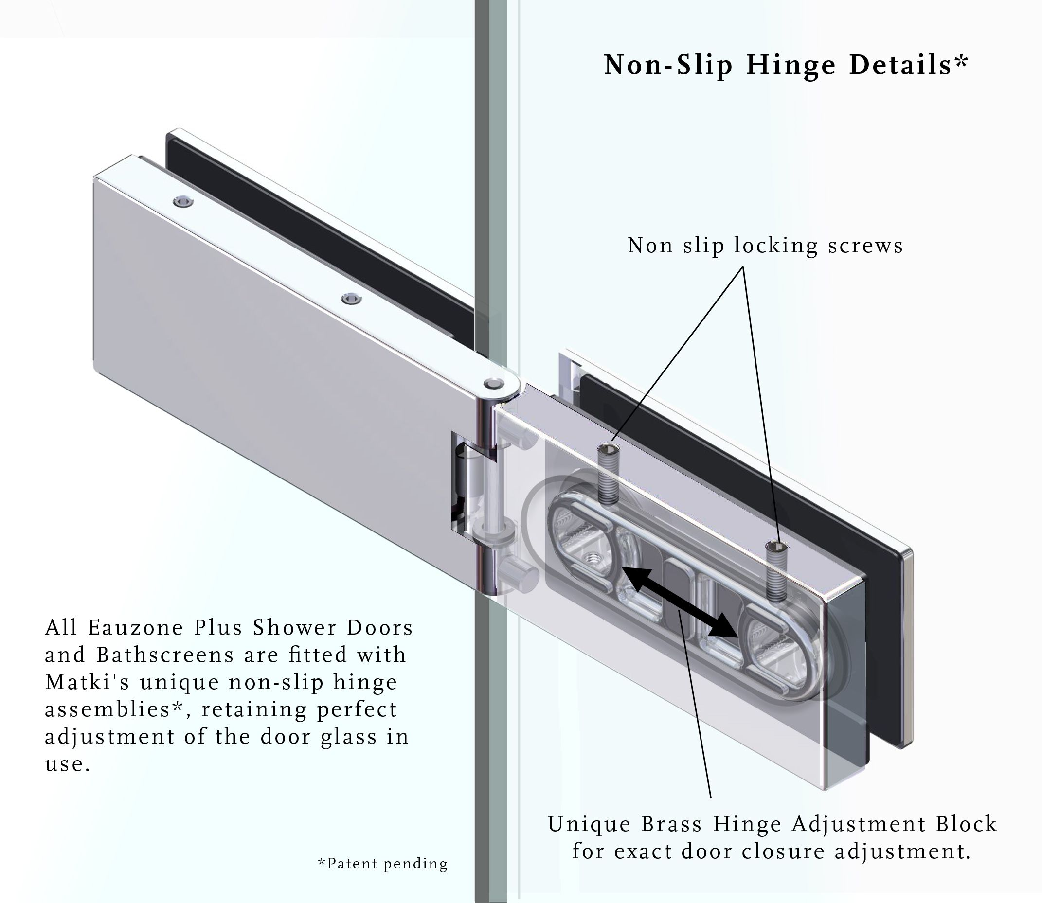 Eauzone Plus Patented Hinge Detail Shower Doors Bath Screens