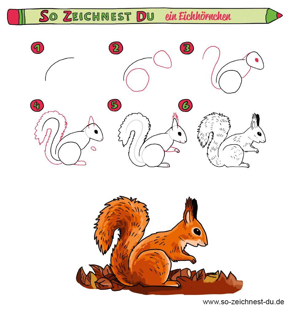 So Zeichnest Du Ein Eichhornchen Mit Einfacher Schritt Fur Schritt Anleitung Sozeichnestdu E Zeichnen Lernen Fur Kinder Eichhornchen Zeichnen Zeichenschule