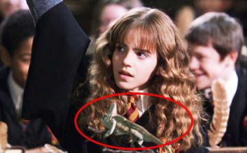 In The Chamber of Secrets, Hermione has a chameleon on her desk. This is foreshadowing when Polyjuice potion is used later in the film so that Harry, Ron, and Hermione can blend in with Slytherin students.