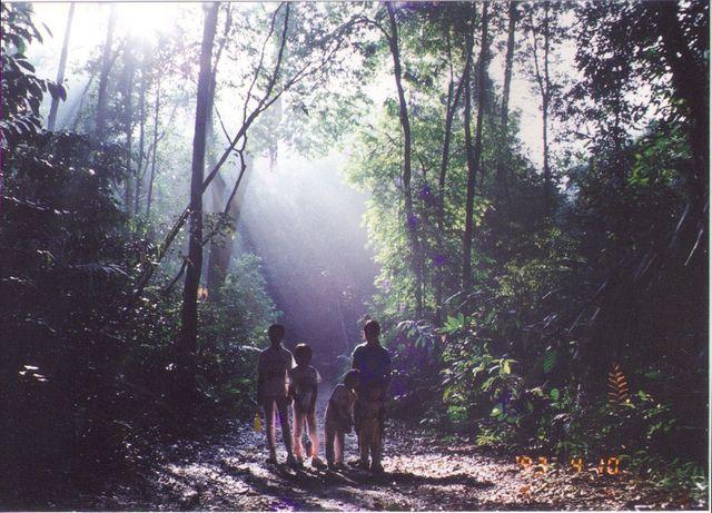 How to take a nature walk