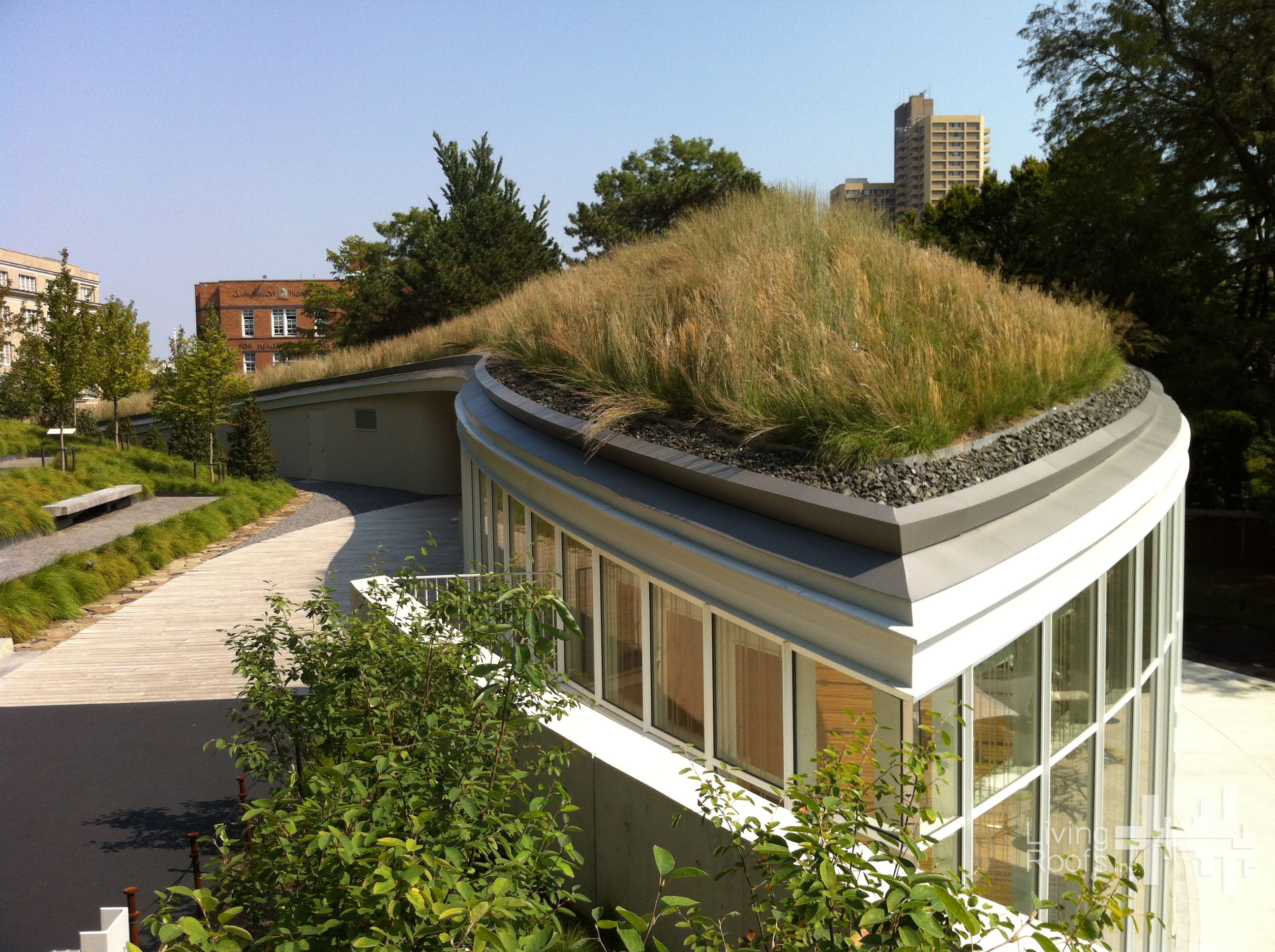 green roof at brooklyn botanical garden green roof installation