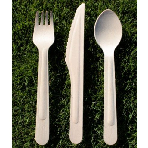 Compostable wooden flatware, about $5 for 100, birchware.net